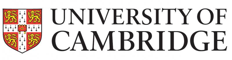 Southampton Arts Academy working with University of Cambridge